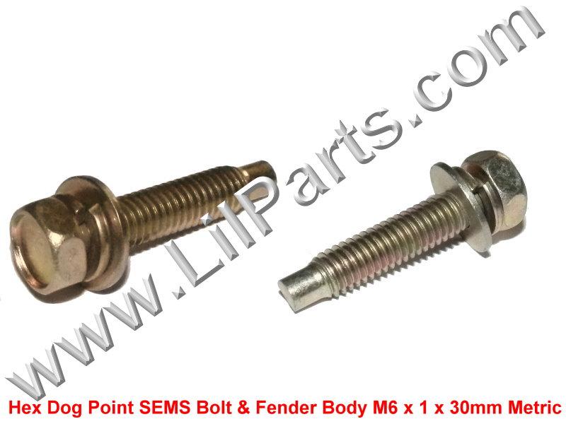 Zinc Plate 6mm Hex Dog Point SEMS 1